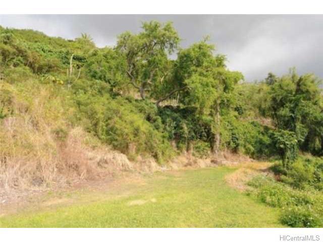82-5929B Napoopoo Rd Captain Cook, Hi 96704 vacant land - photo 1 of 10