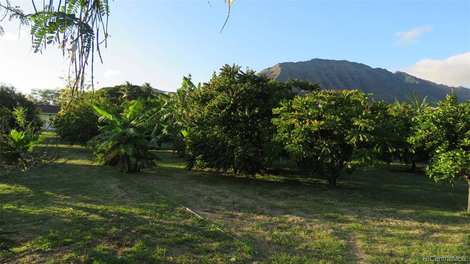 84-242  Makaha Valley Road Makaha, Leeward home - photo 24 of 25