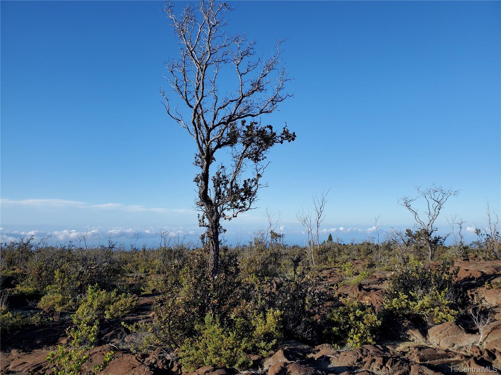 92-8527 Iwalani Circle  Naalehu, Hi 96772 vacant land - photo 15 of 24