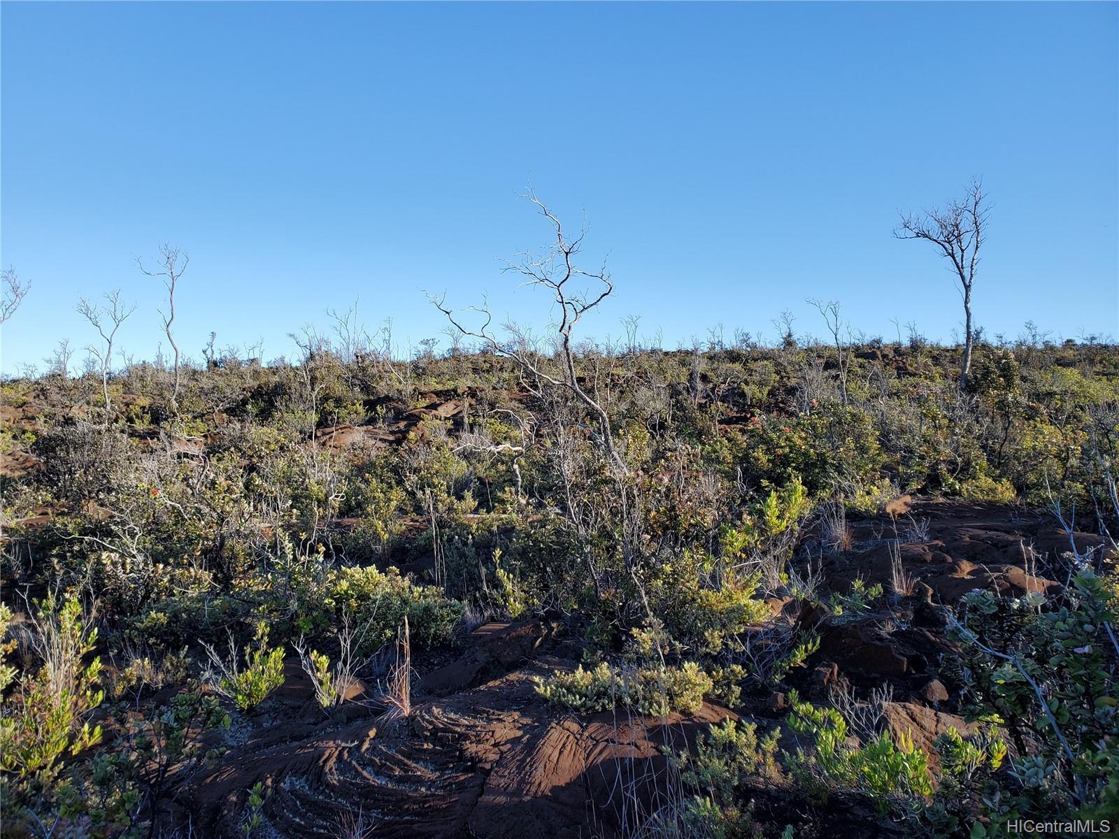 92-8527 Iwalani Circle  Naalehu, Hi 96772 vacant land - photo 23 of 24