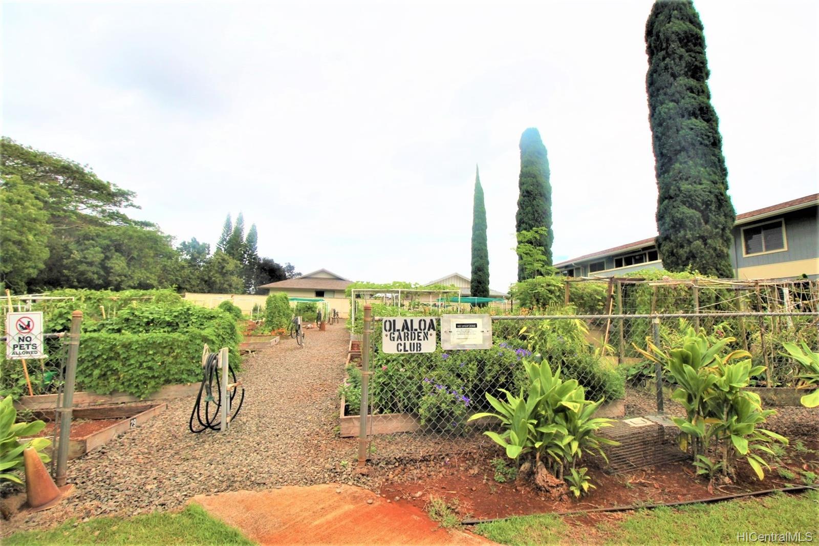 Olaloa 1 condo # W11, Mililani, Hawaii - photo 19 of 19