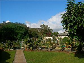 951050 Makaikai St townhouse # W12, Mililani, Hawaii - photo 4 of 18