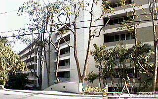 965 Prospect condo # 103, Honolulu, Hawaii - photo 1 of 1