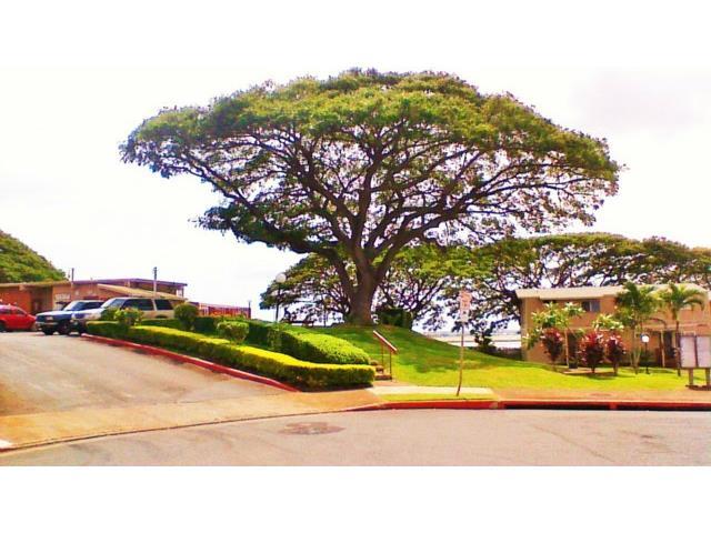 98-1376 Nola St townhouse # C, Pearl City, Hawaii - photo 3 of 15