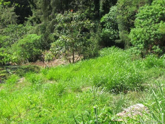 99-460 Fernridge Pl Aiea, Hi 96701 vacant land - photo 1 of 5