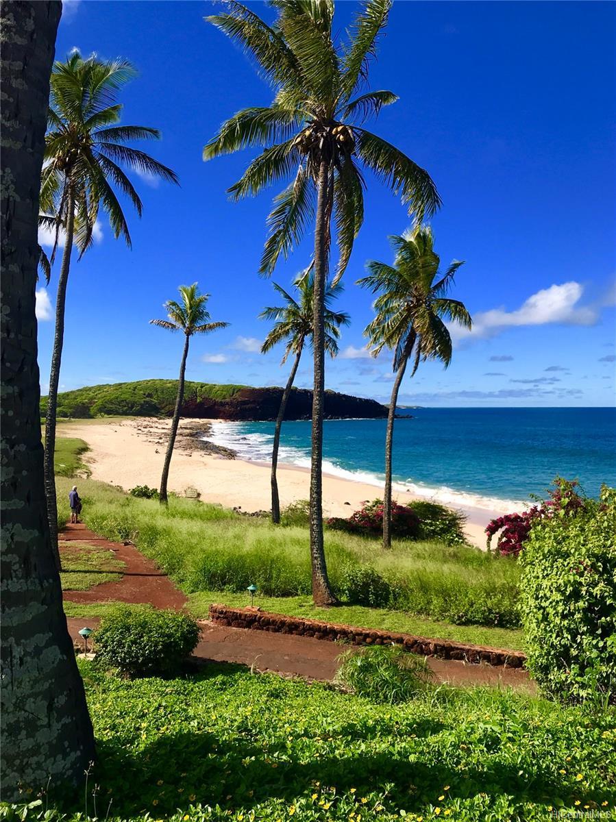 West Molokai Resort condo # 21A06/2132, Maunaloa, Hawaii - photo 19 of 24