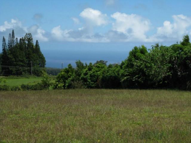Lot 10 Awalau Rd , Hi 96708 vacant land - photo 2 of 15