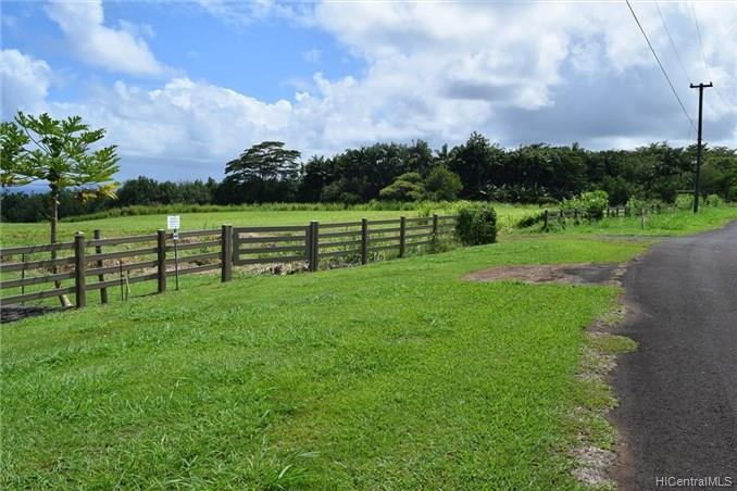 Lot 77 Loa Road  Pepeekeo, Hi 96783 vacant land - photo 5 of 8