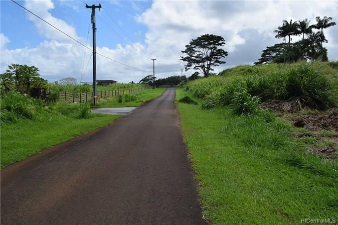 Lot 77 Loa Road  Pepeekeo, Hi 96783 vacant land - photo 8 of 8