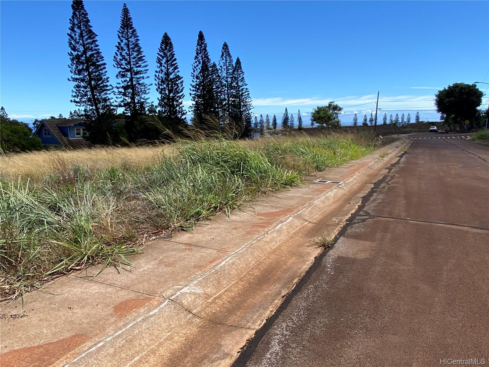 0 Mahiki Place  Maunaloa, Hi 96770 vacant land - photo 4 of 10