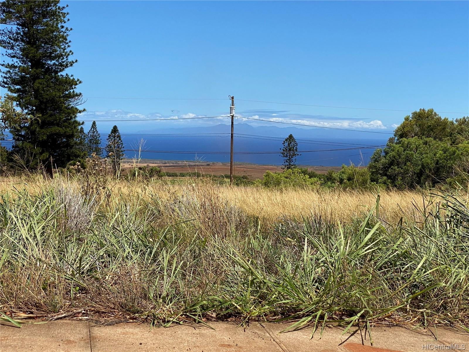 0 Mahiki Place  Maunaloa, Hi 96770 vacant land - photo 10 of 10