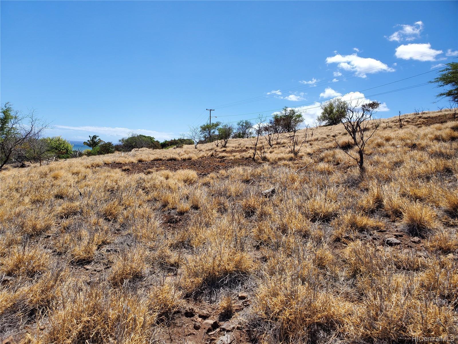 0 Onioni Drive Lot 91 Kaunakakai, Hi 96748 vacant land - photo 11 of 14