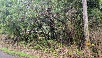 . N Ohiki St  Pahoa, Hi 96778 vacant land - photo 3 of 7