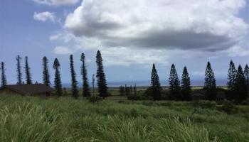 39 Kalua Koi Rd MAUNALOA, Hi 96770 vacant land - photo 0 of 25