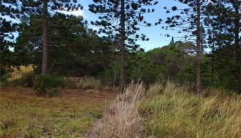 00 Puunana St  Maunaloa, Hi 96770 vacant land - photo 2 of 4