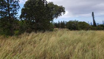 00 Puunana St  Maunaloa, Hi 96770 vacant land - photo 3 of 4