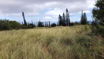 00 Puunana St  Maunaloa, Hi 96770 vacant land - photo 4 of 4
