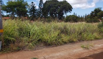 00 Puunana St  Maunaloa, Hi  vacant land - photo 1 of 9