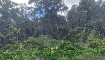 6 OOAA Road  Mountain View, Hi  vacant land - photo 1 of 2