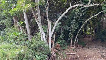 000 Kamehameha V Hwy  Kaunakakai, Hi 96748 vacant land - photo 1 of 9