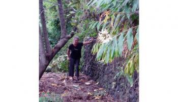 00000 Akina Pl  Kailua-Kona, Hi  vacant land - photo 1 of 2