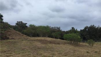 00000 E Kamehameha V Hwy Kaunakakai, Hi 96748 vacant land - photo 4 of 16