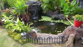 1185  Mokuhano St Kalama Valley, Hawaii Kai home - photo 2 of 2
