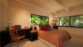 120  Hanupaoa Pl Manoa Area, Honolulu home - photo 5 of 20