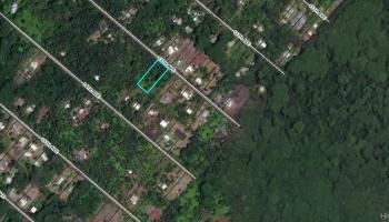0 13th Ave  Keaau, Hi 96749 vacant land - photo 2 of 3