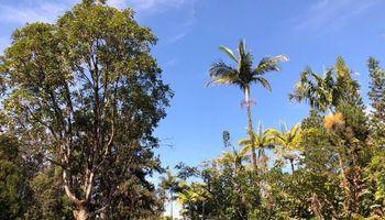 16-1255 Uhini Ana Road  Mountain View, Hi 96771 vacant land - photo 1 of 11