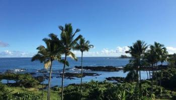 Hale Moana condo # 607, Hilo, Hawaii - photo 1 of 24