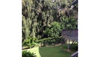 2051  Alewa Dr Alewa Heights, Honolulu home - photo 4 of 7