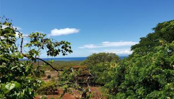 7704  Kamehameha V Hwy ,  home - photo 1 of 16