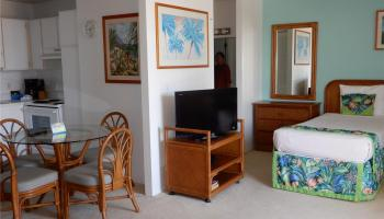 Promenade condo # 206, Honolulu, Hawaii - photo 1 of 25