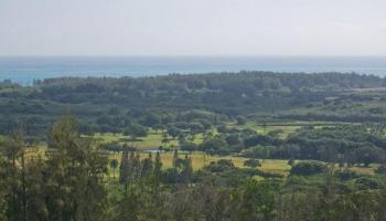 240 Kalanianaole Hwy 11 Kailua, Hi 96734 vacant land - photo 2 of 7
