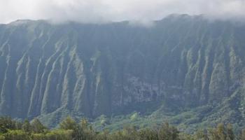 240 Kalanianaole Hwy 9 Kailua, Hi 96734 vacant land - photo 1 of 8