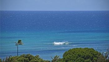 condo # 210, Honolulu, Hawaii - photo 1 of 17