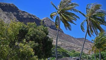 Diamond Head Hillside condo # 201, Honolulu, Hawaii - photo 1 of 21
