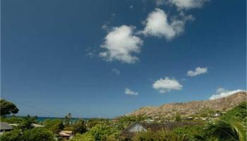 4019  Papu Cir Diamond Head, Diamond Head home - photo 3 of 5