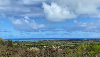 42-32 Old Kalanianaole Road  Kailua, Hi  vacant land - photo 1 of 11