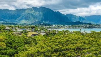 Healani Gardens condo # 521, Kaneohe, Hawaii - photo 1 of 16