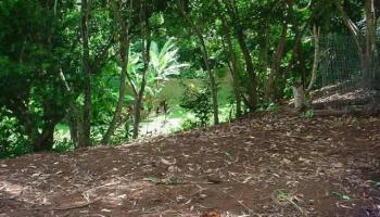 45-183 Keana Rd  Kaneohe, Hi 96744 vacant land - photo 4 of 5
