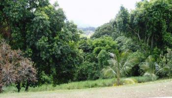 condo # 0, Kaneohe, Hawaii - photo 3 of 6