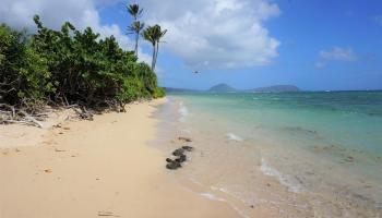 4433 Kahala Ave  Honolulu, Hi  vacant land - photo 1 of 6