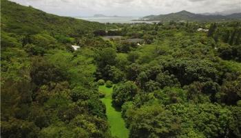 47-285 Pulama Rd  Kaneohe, Hi 96744 vacant land - photo 2 of 6