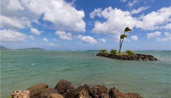 4999 Kahala Ave Honolulu - Rental - photo 4 of 11