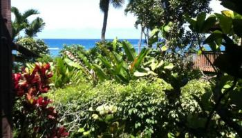 Makaua Village condo # 215, Kaaawa, Hawaii - photo 1 of 8
