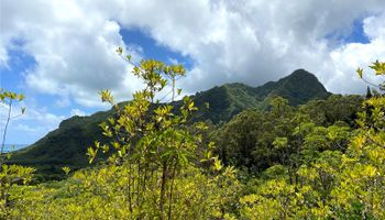53-372M Kamehameha Hwy 6 and 11 Hauula, Hi 96717 vacant land - photo 3 of 24
