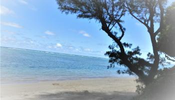 Pats At Punaluu condo #515, Hauula, Hawaii - photo 0 of 9