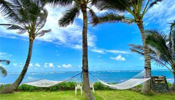 53-846  Kamehameha Hwy ,  home - photo 1 of 23